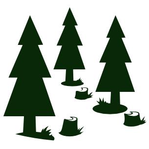 lesnictví